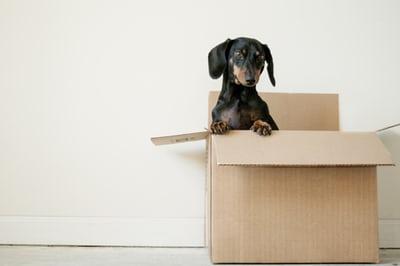 Le garde-meuble: un excellent dépannage pour un déménagement